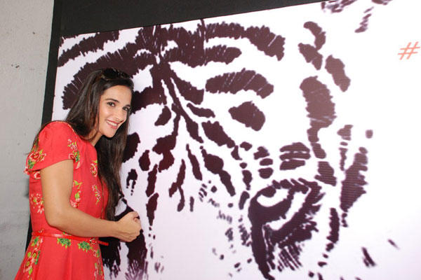 Tara Sharma Attend The NDTV Save Our Tigers Campaign 2014