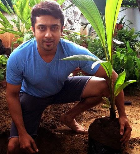 Suriya Picks A Spot In His Garden For His New Plant