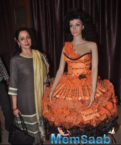 Hema Malini Launched Institute For New Talents Of Film And Television Actors