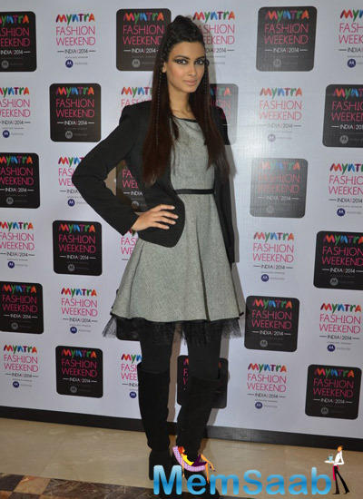 Diana Penty Posed On Day 3 During Myntra Fashion Weekend 2014