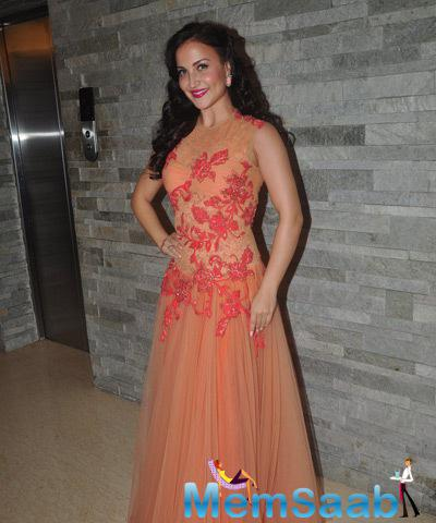 Elli Avram Looked Gorgeous In Long Sleeve Less Gown At Miss Femina Officially Gorgeous 2014