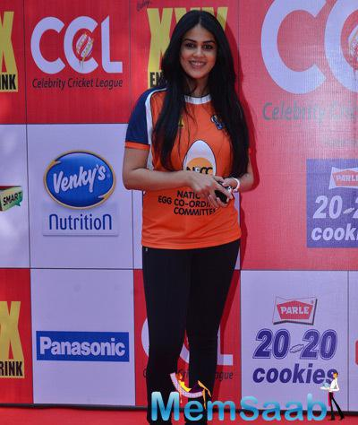 Genelia D'Souza Smiling Pose At CCL Red Carpet 2015