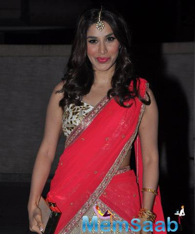 Sophie Choudry Gorgeous Look At Saree At Soha Ali Khan And Kunal Khemu Wedding Party