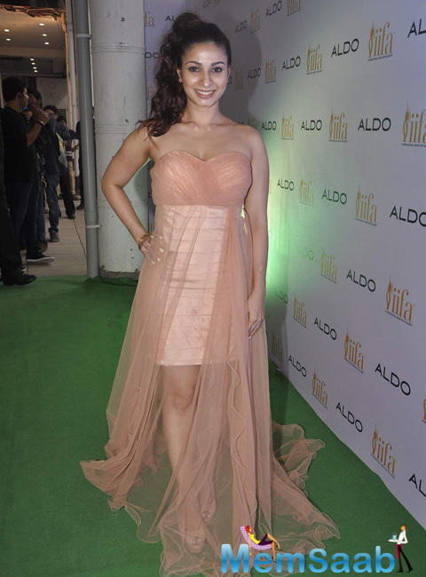 Tanisha Mukerji Glamour Sexy Look During Aldo IIFA 2015 Promotional Event