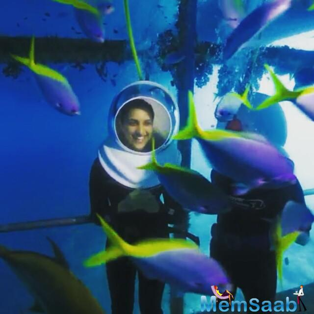 Parineeti Chopra clicked when enjoying with colorful fish's Inside Coral reef in Queensland