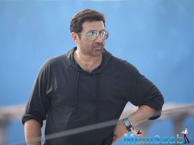 After Ghayal once again, Sunny Deol has put all his concentration for his son Karan's debut film Pal Pal Dil Ke Paas'.