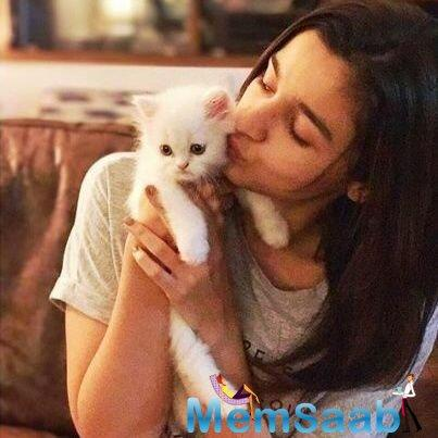 Alia Bhatt is certainly causing a swell time post the passing of 'Badrinath Ki Dulhania'.