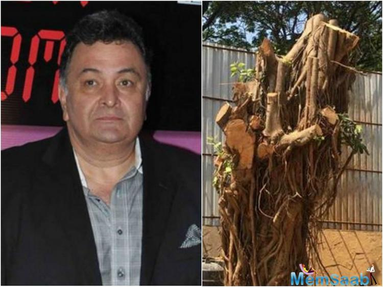 The FIR has also been filed against the contractor who has hired for the work by Kapoor.