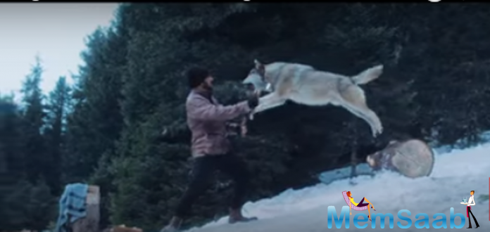 The makers have shared a brand new still from the film. In the picture, Salman can be seen looking in the eyes of a deadly wolf.