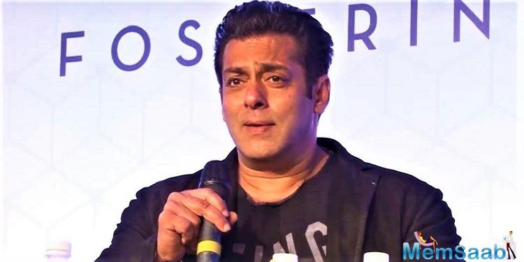 Bollywood got its Tiger in 2012 when the Salman Khan starrer 'Ek Tha Tiger' released.
