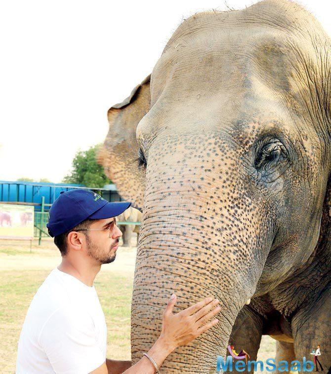 The highlight of the visit, however, was his keen interest in Gajraj, the 70-year-old tusker rescued from Maharashtra's Satara.
