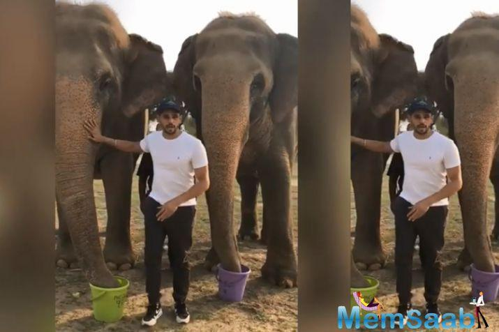 Sidharth Malhotra celebrated Save the Elephant Day (April 16) by visiting the Elephant Conservation and Care Centre in Mathura.