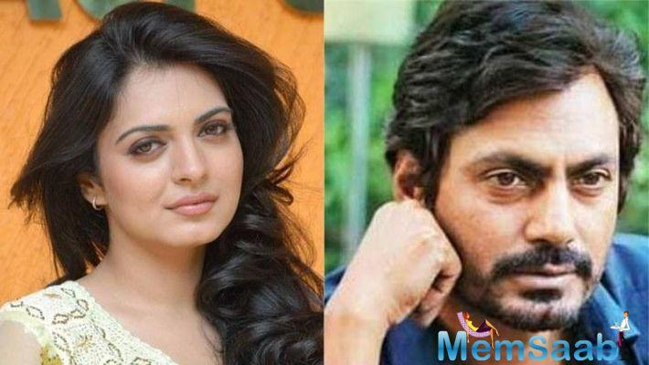 Nawazuddin is yet to comment on Niharika's allegations.