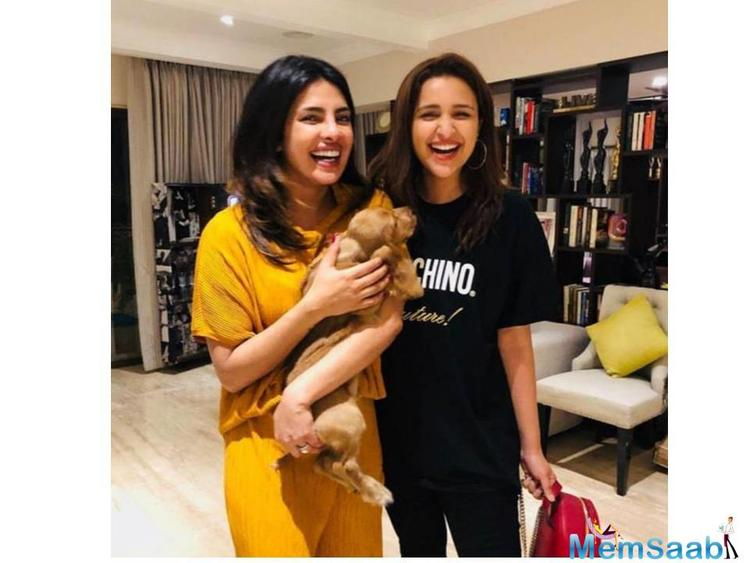 """Parineeti Chopra also gave a very sweet name to the dog- Bailey Chopra which she revealed it in her caption and wrote, """"Meet #BaileyChopra! And like in any other punjabi family — I (his aunt) named him!! Hahaha."""""""