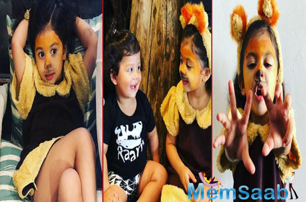 Giving us a glimpse of Zain and Misha's lives filled with innocence and frolic, Mira Rajput shared this heartwarming picture on social media.