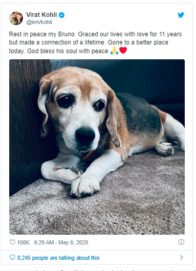Writing Bruno, RIP, she also commented with three hearts. For all those who have pets at their homes, this news will surely pierce you.