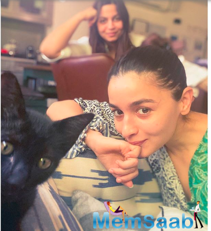 Have a look right here, Alia Bhatt recently welcomed another cat.