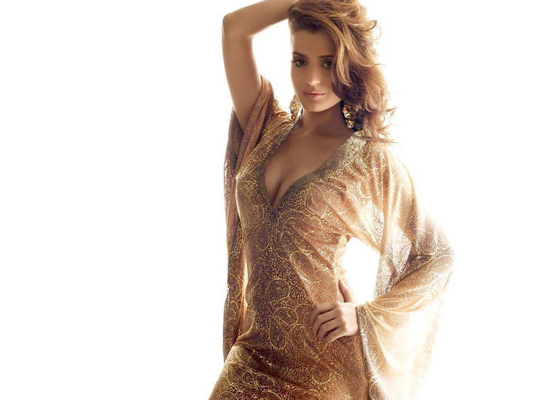 Hot Sexy Amisha Patel