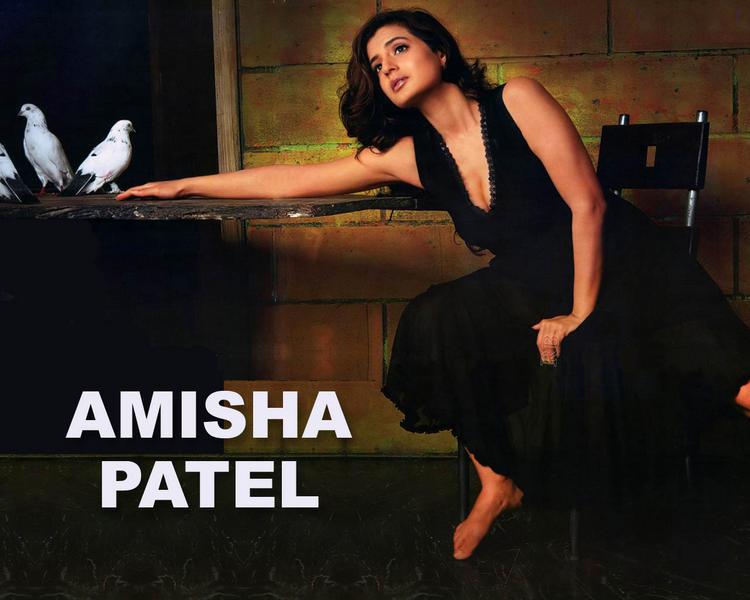 Amisha Patel In Black Wallpaper