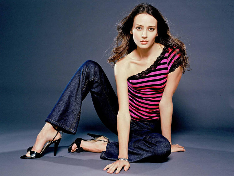 Amy Acker Hot Pose Photo Shoot