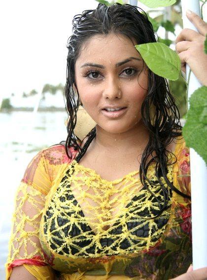 Bhagavan MLA Kannada Movie Namitha Wet Swin Still