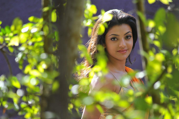Businessman movie kajal agarwal cute still