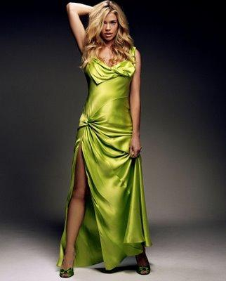 Denise Richards Sexy Dress Hot Look Pic