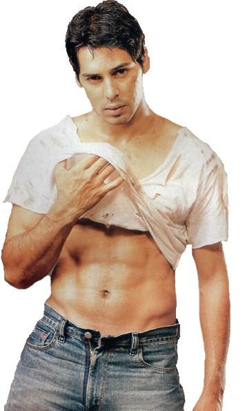 Dino Morea Six Pack Still Wallpaper