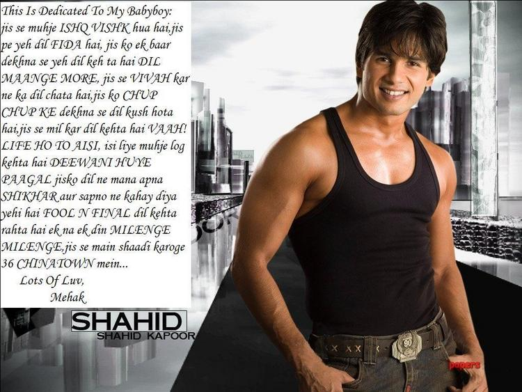 Hot Bollywood Star Shahid Kapoor Wallpaper