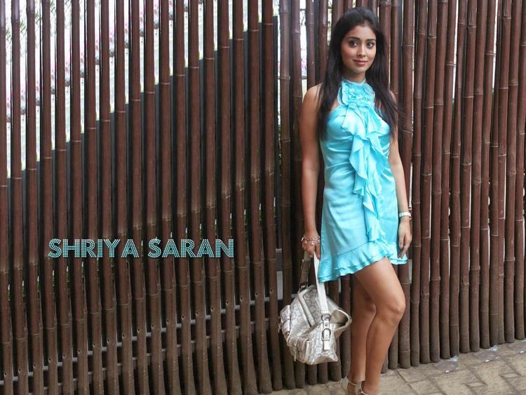 Hot Shriya Saran Wallapper