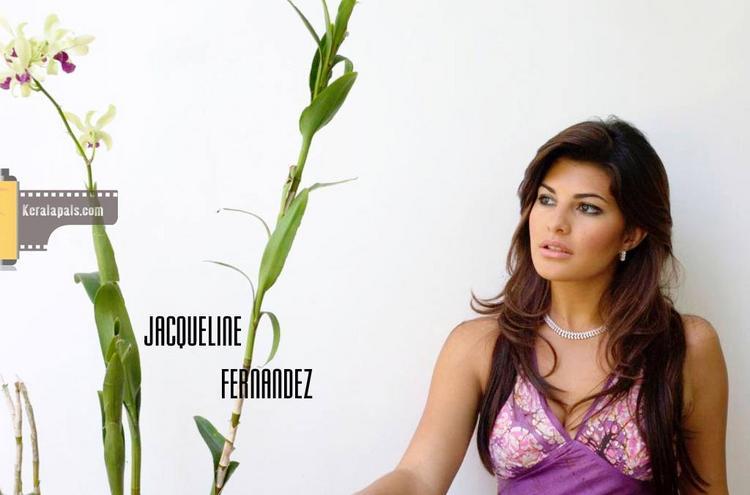 Jacqueline Fernandez Sizzling Wallpaper