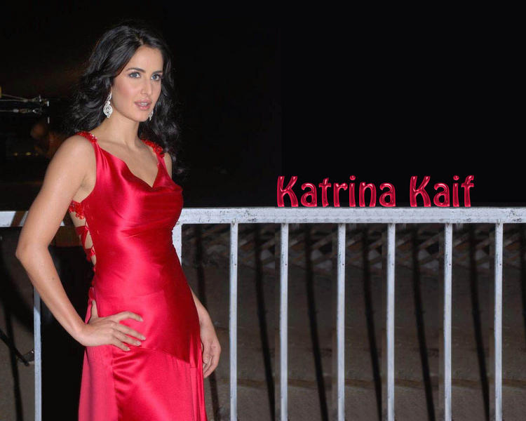 Katrina Kaif Gorgeous Wallpaper