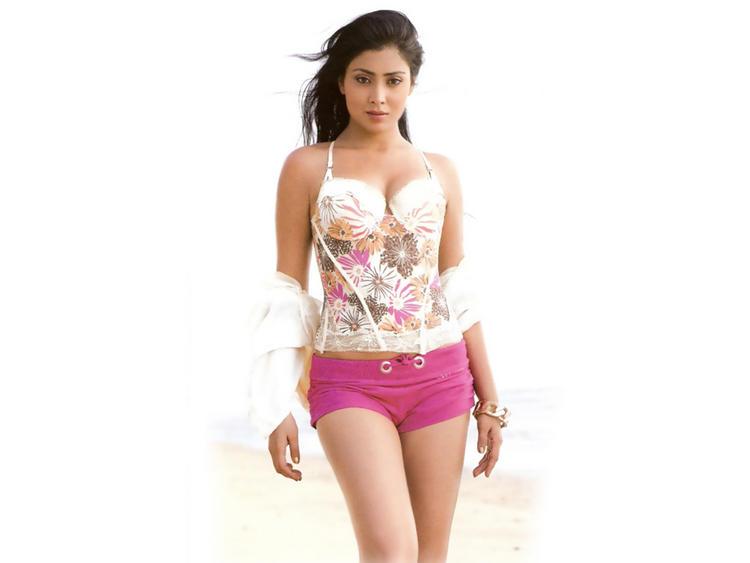Masala Actress Shriya Saran Wallpaper