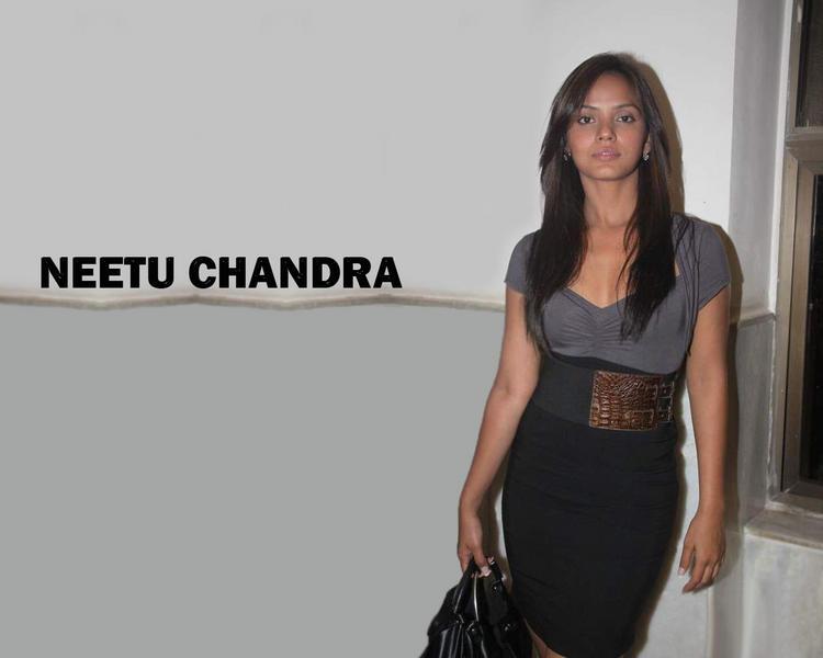 Neetu Chandra Latest Glamouer Wallpaper