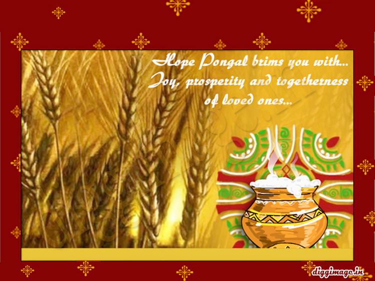 Pongal 2012 Greetings