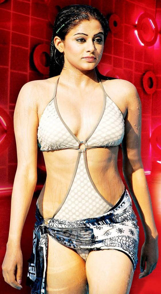 Priyamani in Swimsuit Latest Hot Wallpaper