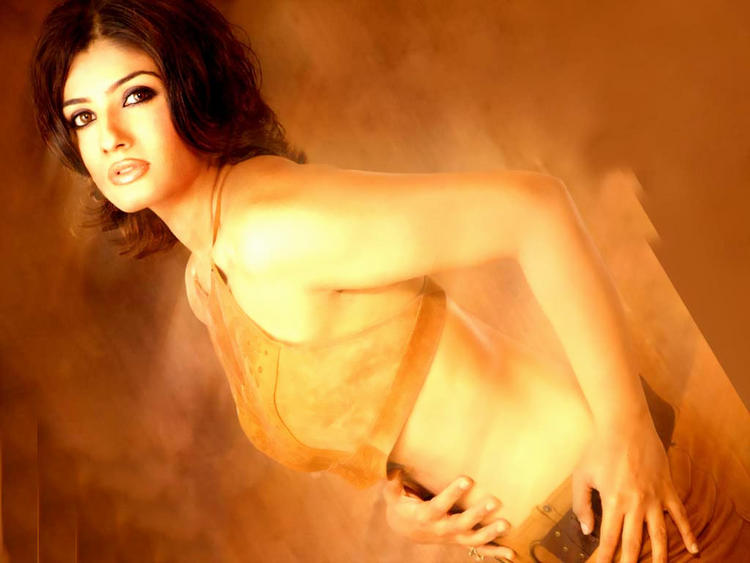 Raveena Tandon Latest Gorgeous Wallpaper
