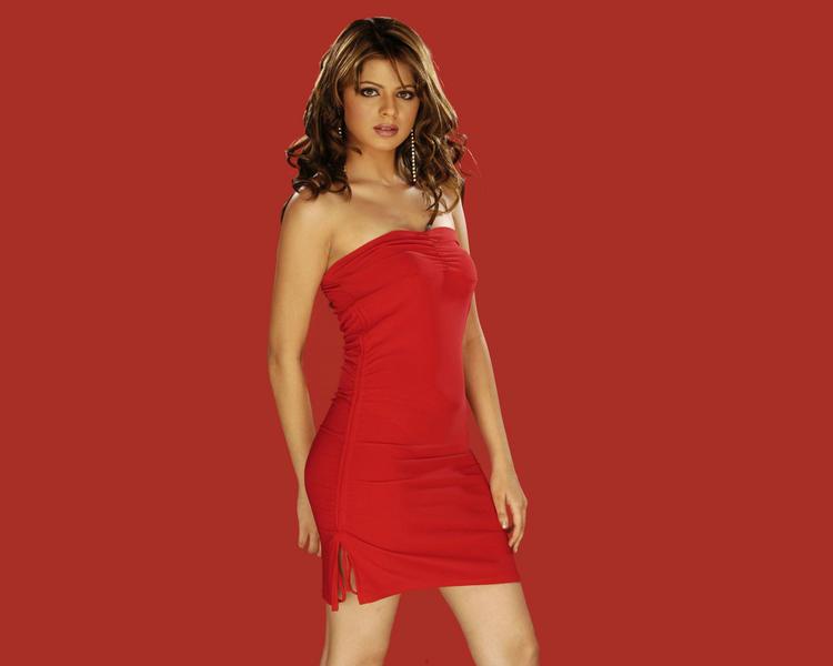 Rucha Gujarati Sleeveless Dress Wallpaper