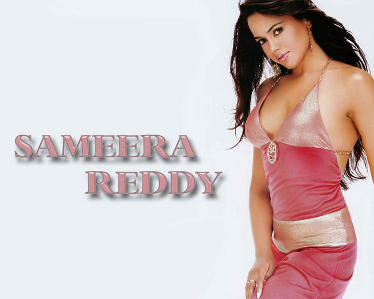 Sameera Reddy Bikini Dress Wallpaper