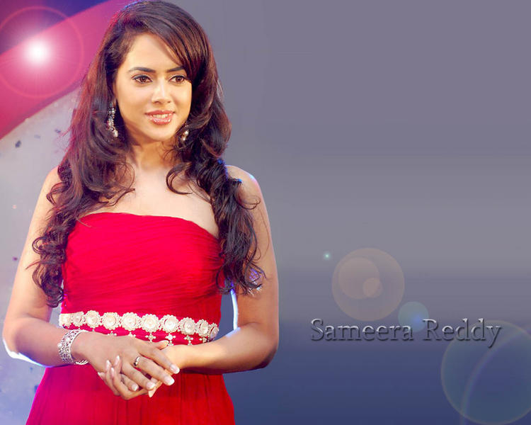 Sameera Reddy Cute Gorgeous Face Wallpaper