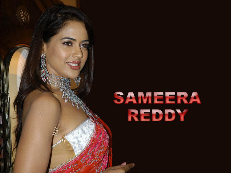 Sameera Reddy Side Gorgeous Face Wallpaper