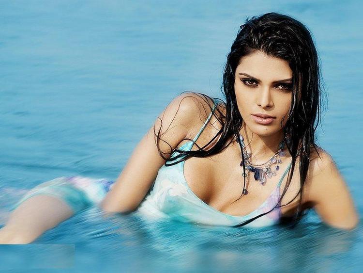Sherlyn Chopra Hot Photo Shoot In Water