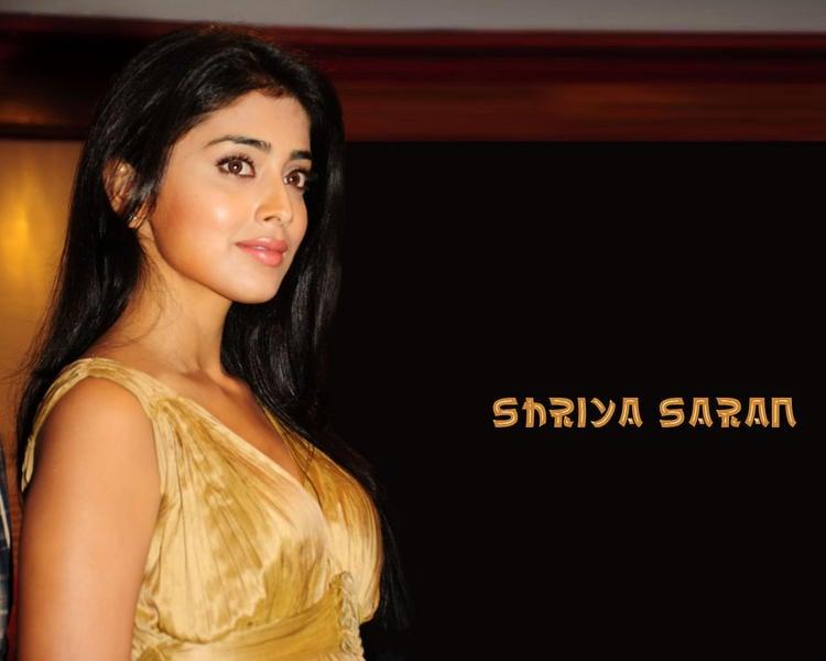 Shriya Saran Gorgeous Face Hottest Wallpaper