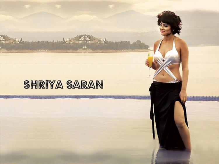 Shriya Saran Sexiest Bikini Dress Wallapper