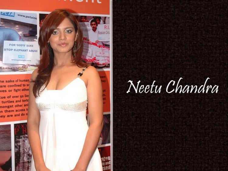 Sizzling Neetu Chandra Wallpaper