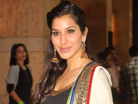 Sophie Choudry glamour still at Dheeraj Deshmukh wedding reception
