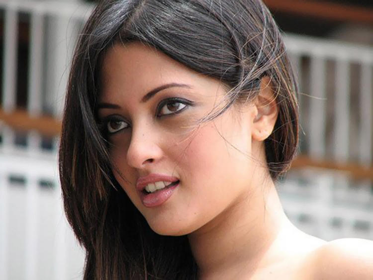 Tollywood Stunning Beauty Riya Sen Wallpaper