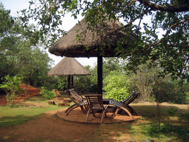Wildernest Nature Resort, Goa