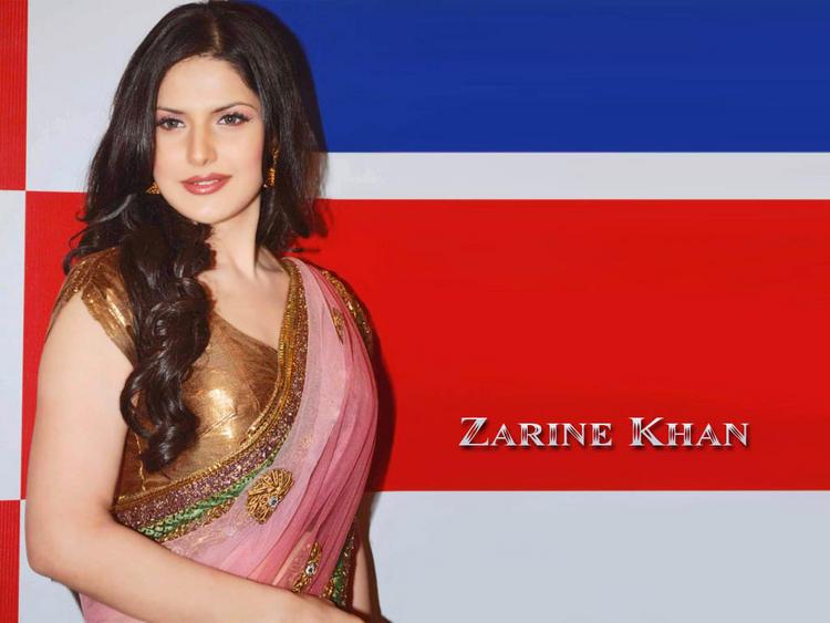 Zarine Khan Hot Picture