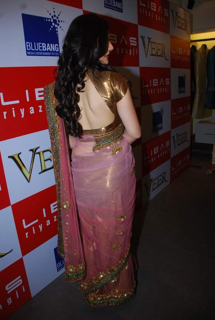 Zarine Khan Hot Saree Sexy Back Exposing Photo
